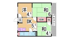 マンション朝霧2号館 505の間取